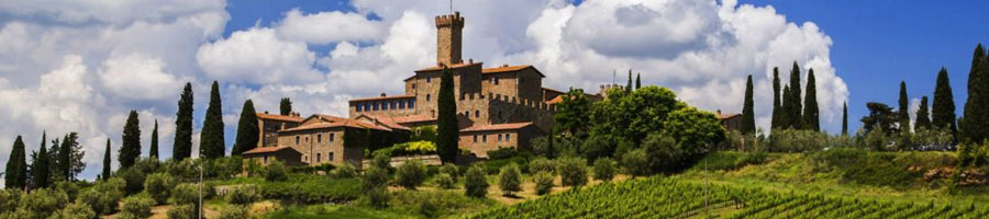 Siena-Montalcino-wineyard-primaclasseitaly